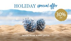 Extended Holiday Special Offer - 30% off